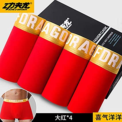WXNLEAI Kung Fu Dragon Ropa interior para hombres Boxer de algodón para hombres Pantalones de esquina