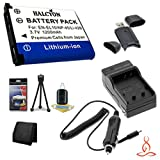 Halcyon 1200 mAH Lithium Ion Replacement EN-EL10 Battery and Charger Kit + Memory Card Wallet + SDHC Card USB Reader + Deluxe Starter Kit for Nikon Coolpix S220 10.0 Megapixel Digital Camera and Nikon EN-EL10