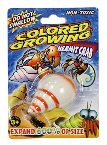 Grow a Crab Just Add Water Hermit Crab (Orange Swirl)