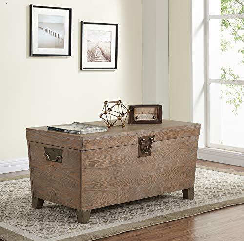Southern Enterprises Pyramid Trunk Cocktail Table, brown (Trunk Table Coffee)