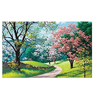 Graysky 1000 Piece Jigsaw Puzzles for Beginner Adults and Kids Age 6+, World Famous Painting Landscapes Series, Pieces Fit Together Perfectly, Spend Quality Time with Child, 20X30 Inch: Toys & Games