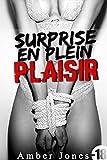 surprise en plein plaisir histoire ?rotique masturbation exhibition taboo interdit french edition
