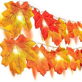 Amazon.com: Ewans Decoración de Acción de Gracias iluminada ...