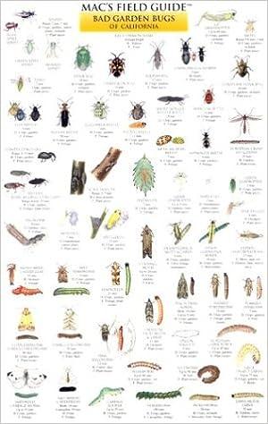 Macu0027s Field Guide Good Garden Bugs Of California (Macu0027s Guides (Charts)):  Craig MacGowan: 9780898867114: Amazon.com: Books