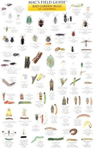 Mac's Field Guide Good Garden Bugs of California (Mac's Guides (Charts))