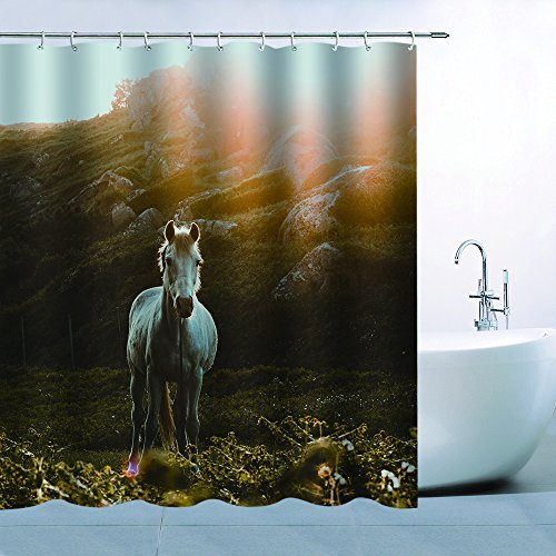 - BCNEW Animal Horse Pattern Theme Shower Curtain Sunshine Hill White Horse Running On Green Grassland Waterproof Mildew Resistant Polyester 70 x 70 Inches