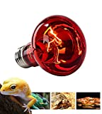 DREAMER.U Infrared Basking Spot Heat Lamp/Light/Bulb for Reptile and Amphibian Use 50/75/100/150-watt (150-watt)