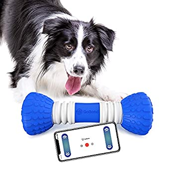 Image of GoBone Interactive App-Enabled Smart Bone for Dogs and Puppies, One Size Pet Supplies