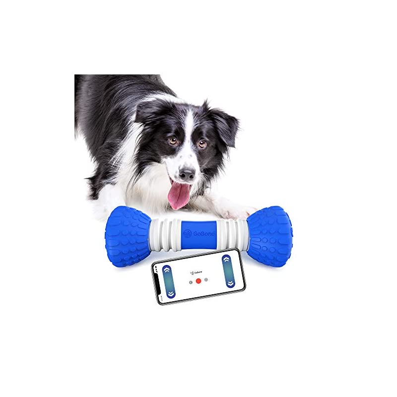 dog supplies online gobone interactive app-enabled smart bone for dogs and puppies, one size