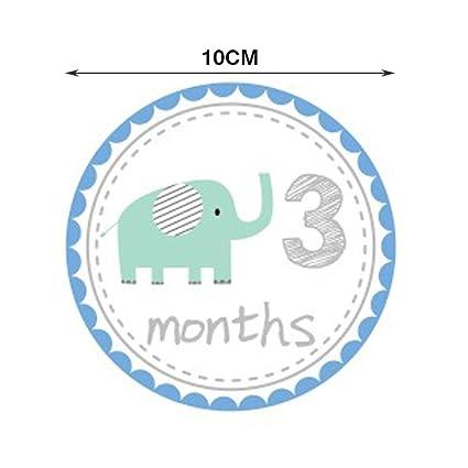 Amazon.com: Mensual bebé Pegatinas gran ducha regalo ...
