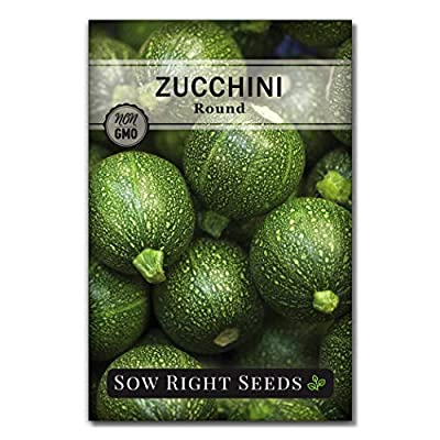 Sow Right Seeds - Round Zucchini Seed for Planting - Non-GMO Heirloom Packet with Instructions to Plant a Home Vegetable Garden - Great Gardening Gift (1) : Garden & Outdoor