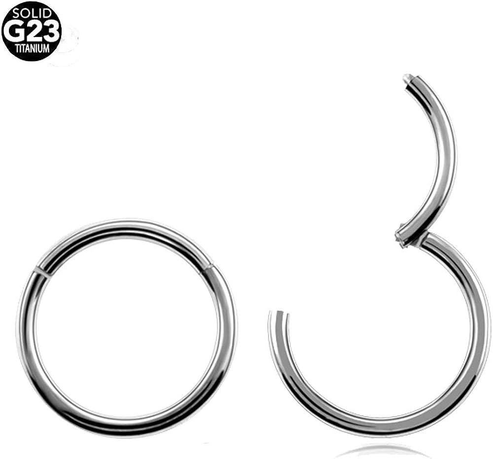 Nose Stud 1Pc G23 Titanium Hinged Segment Nose Ring 16G/&14G Unisex,Purple,1.2X8Mm
