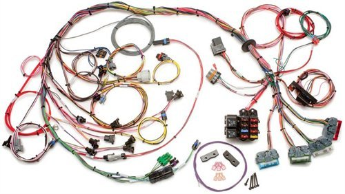 Painless Wiring 60502 Fuel Injection Wiring Harness For Use with ECM/PCM PN[16188051] (Wiring Fuel Painless Injection)