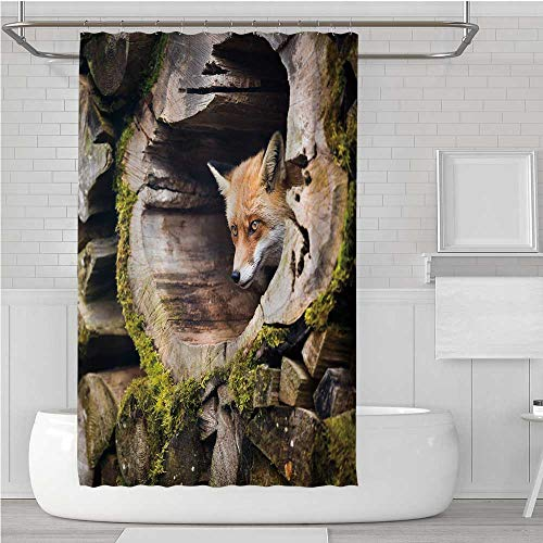 (C COABALLA Animal Modern Shower Curtain,Forest Nature Wild Fox with Hazel Eyes in a Wooden Carved Tree wth Moss Art Print for Toilet Maternal and Infant Room,62.9''W x 72''H )