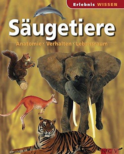 Säugetiere: Anatomie, Verhalten, Lebensraum Wissen für Kinder ...