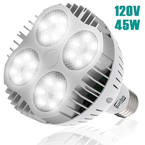 In Ground Led Light Fixtures