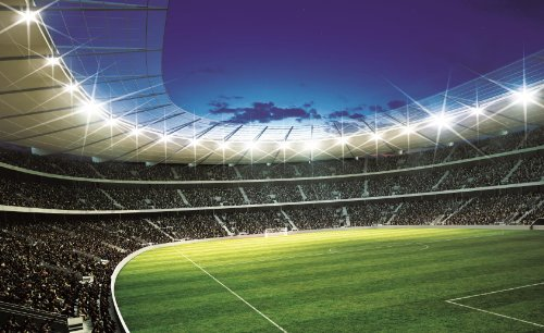 Exceptional Sports Murals. Image Is Loading Lights Color Soccer Football Stadium Wall  ... Part 4