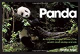 Panda: An Intimate Portrait Of One Of The World's Most Elusive Characters