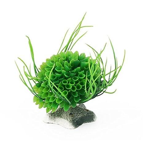 Amazon.com : eDealMax pecera de plástico Aquascape Artificial Submarino acuática decoración de la hierba Verde Planta de Acuario : Pet Supplies