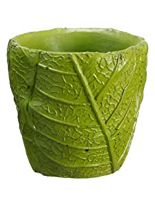 """3""""Hx3""""D Cement Leaf Container Green (Pack of 24)"""