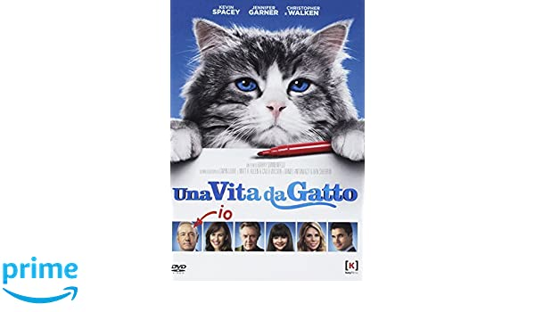 Nine Lives - Una Vita da Gatto [Italia] [DVD]: Amazon.es ...
