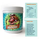 Ludicrous Nutrients Premium Cannabis/Marijuana Fertilizer Eco Friendly - to Grow The Ultimate Chronic Weed Pot Plants for Indoor, Outdoor, and/or hydroponic Growing (500 Grams, Bloom)