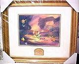 Disney Galleries 10th Anniversary Little Mermaid Framed Pin Set #104/1989 Rare