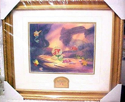 Disney Galleries 10th Anniversary Little Mermaid Framed Pin Set #104/1989 Rare by Disney