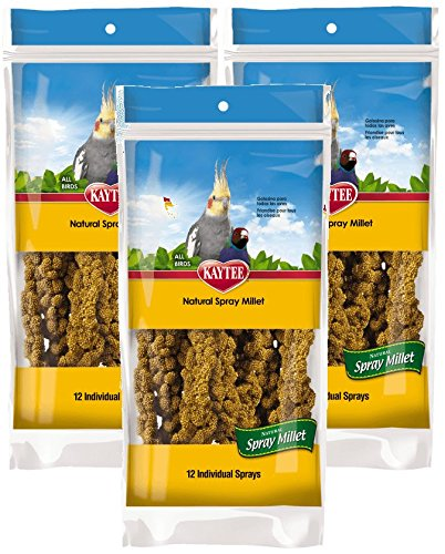 Millet Bird - Kaytee Spray Millet for Birds (Pack of 3)