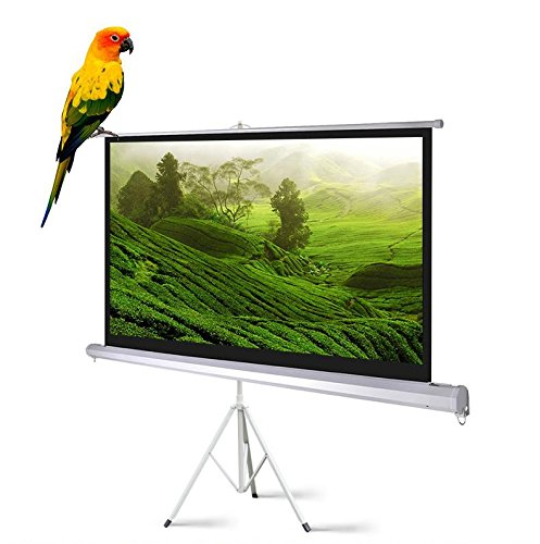 FDW BEFL3 – Portable Projector Screen with Tripod Pull-up – 120″, 4:3, Matte