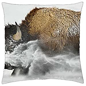 Buffaloes - Throw Pillow Cover Case (18