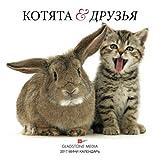 Kittens & Friends 2017 Calendar Russian Language (Russian Edition)