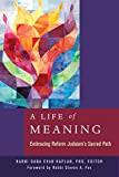 img - for A Life of Meaning: Embracing Reform Judaism's Sacred Path book / textbook / text book