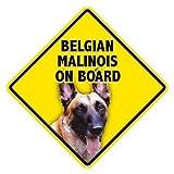 Belgian Malinois On Board Home & Car Window Swinger Sign