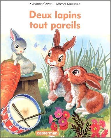 Téléchargement Deux lapins tout pareils pdf