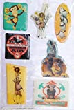 Dreamwork Madagascar Escape 2 Africa Safari Animals Puffy 3D Stickers (7 Stickers)