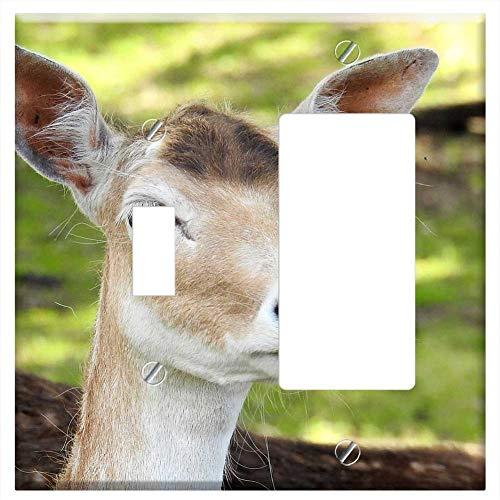 (1-Toggle 1-Rocker/GFCI Combination Wall Plate Cover - Roe Deer Fallow Deer Animal Nature Mammal 2)