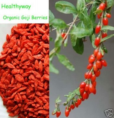 NutritionSource Healthyway Super Grade Organic Goji Berries Wolfberry (10 Pounds) by ADHealthyway