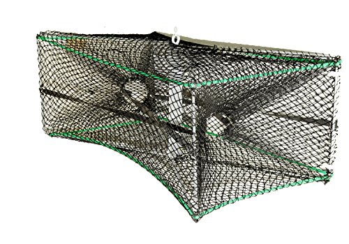 KUFA Foldable prawn trap(size:16