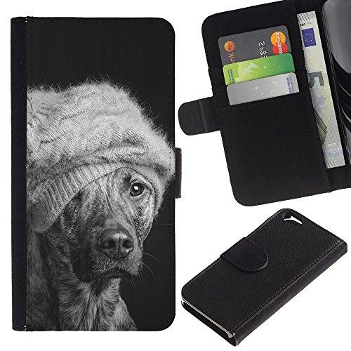 EuroCase - Apple Iphone 6 4.7 - winter dog fashion Australian cattle mutt - Cuir PU Coverture Shell Armure Coque Coq Cas Etui Housse Case Cover
