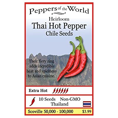 Thai Hot Pepper Heirloom - 10 Seeds - Extra Hot - Non-GMO : Garden & Outdoor