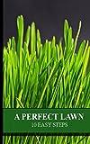 A Perfect Lawn