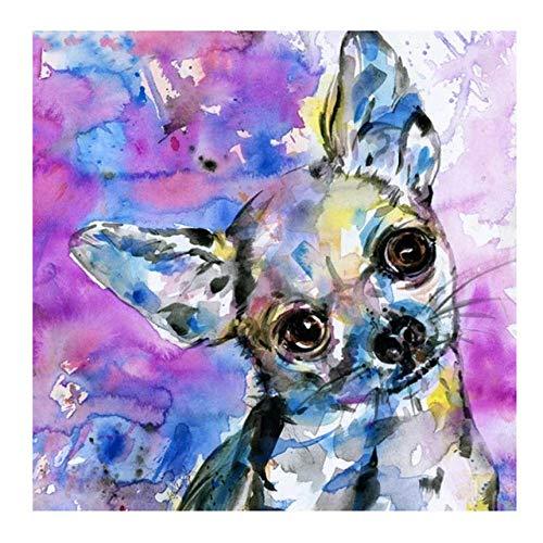 - Lovezy Embroidery New 5D DIY Diamond Painted Dog Chihuahua Pet Sale Diamond Embroidered Cross-Stitch Rhinestone Wall Art Deco Sticker