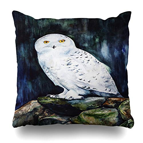 """Ahawoso Decorative Throw Pillow Cover Stones Blue Bird White Snowy Owl Forest Watercolor Nature Cute Drawing Fauna Night Painting Design Home Decor Pillowcase Square Size 20"""" x 20"""" Cushion Case"""