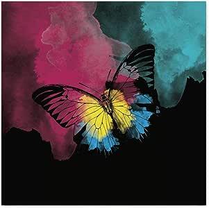 Arte Maníacos Quadro Decorativo Borboleta Color - 30x30cm