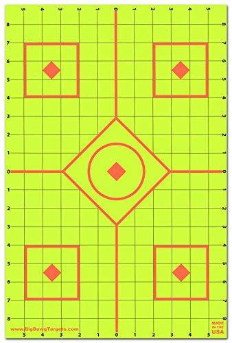 12 x 18 target - 9