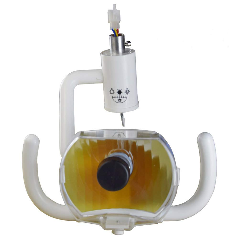 SMGPYYLQX Dental Equipment Material Accessories Dental Chair Oral Inspection lamp Oral Equipment Dental Halogen lamp Daylight Dental lamp