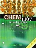 Chem 1107 : General Chemistry Lab I, Benavides, Maria, 146522162X