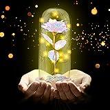Siebwin Galaxy Rose, Forever Flower, Galaxy