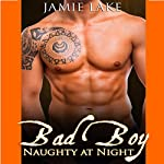 Bad Boy: Naughty at Night: Bad Boy: Naughty at Night, Book 1 | Jamie Lake